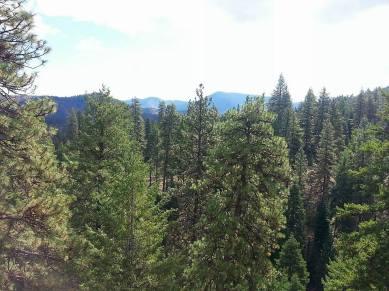 Wildcat Mountain Morning Hike 5