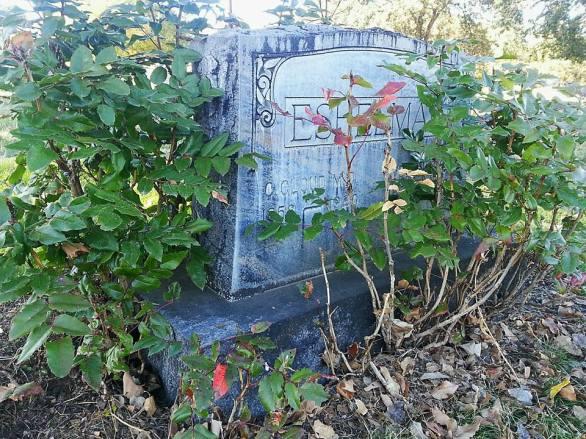 Odd Fellows Cemetery 2
